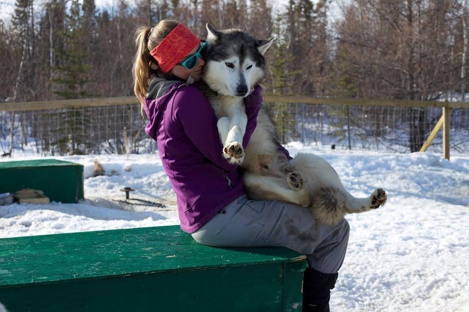 Enodah Dog Sledding outside of Yellowknife
